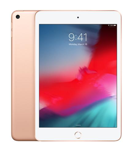Apple iPad mini 64 GB Goud
