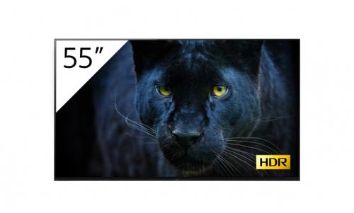 "Sony FWD-55A8/T beeldkrant Digitale signage flatscreen 138,7 cm (54.6"") OLED 4K Ultra HD Zwart Android 9.0"