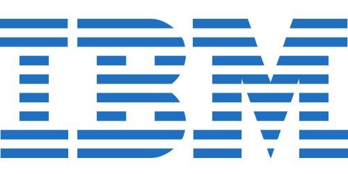IBM Windows Remote Desktop Services CAL 2012 (5 User) - Multi